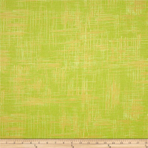 Michael Miller Painter's Canvas Lime